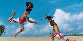 kalaripayattu practitioners were also skilled in traditional medicine and massage